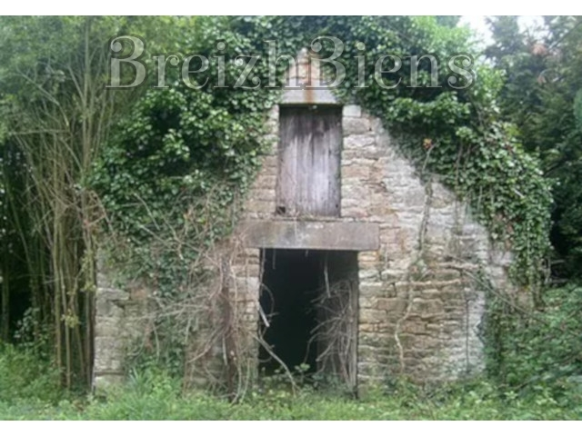 Farmhouse and outbuildings to renovate